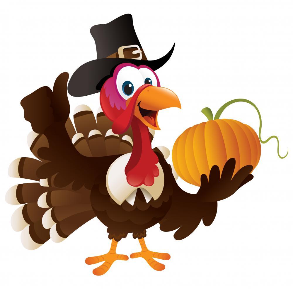1000x985 Pilgrim Turkey Holding A Pumpkin