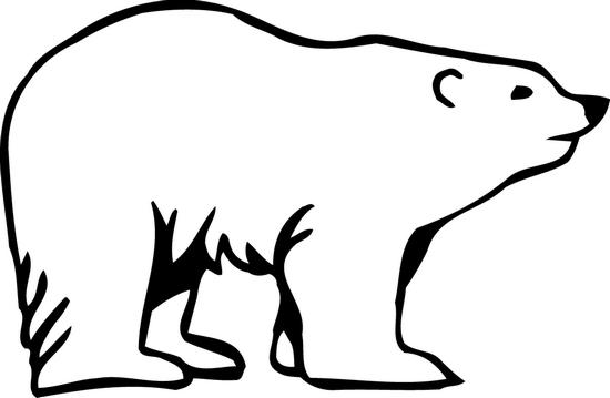 550x359 Polar Bear Clipart Clear Background