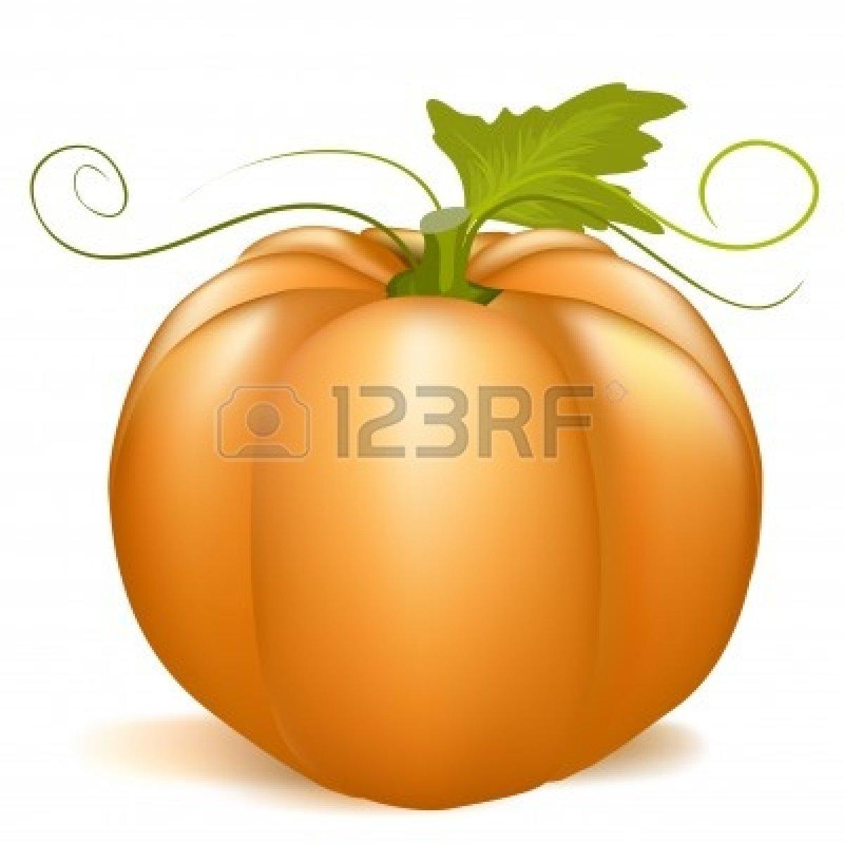 1200x1200 Rustic Pumpkin Clipart
