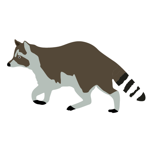 Raccoon Clipart Free | Free download best Raccoon Clipart Free on ...