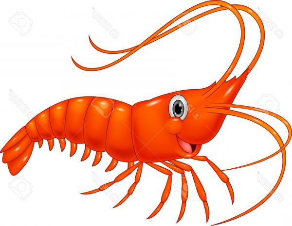 cute shrimp cliparts free download best cute shrimp Fried Shrimp Clip Art Shrimp Boil Clip Art