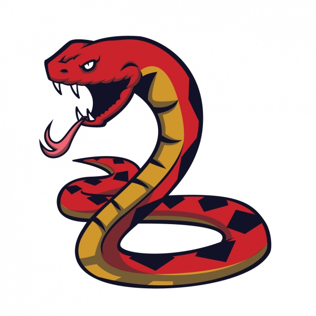 626x626 Snake Vectors, Photos And Psd Files Free Download