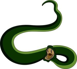 300x267 Snake clipart snake fang