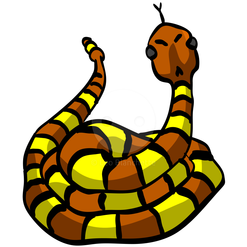 800x800 Cartoon Snakes Clip Art Page 2 Snake Images Clipart Free 4