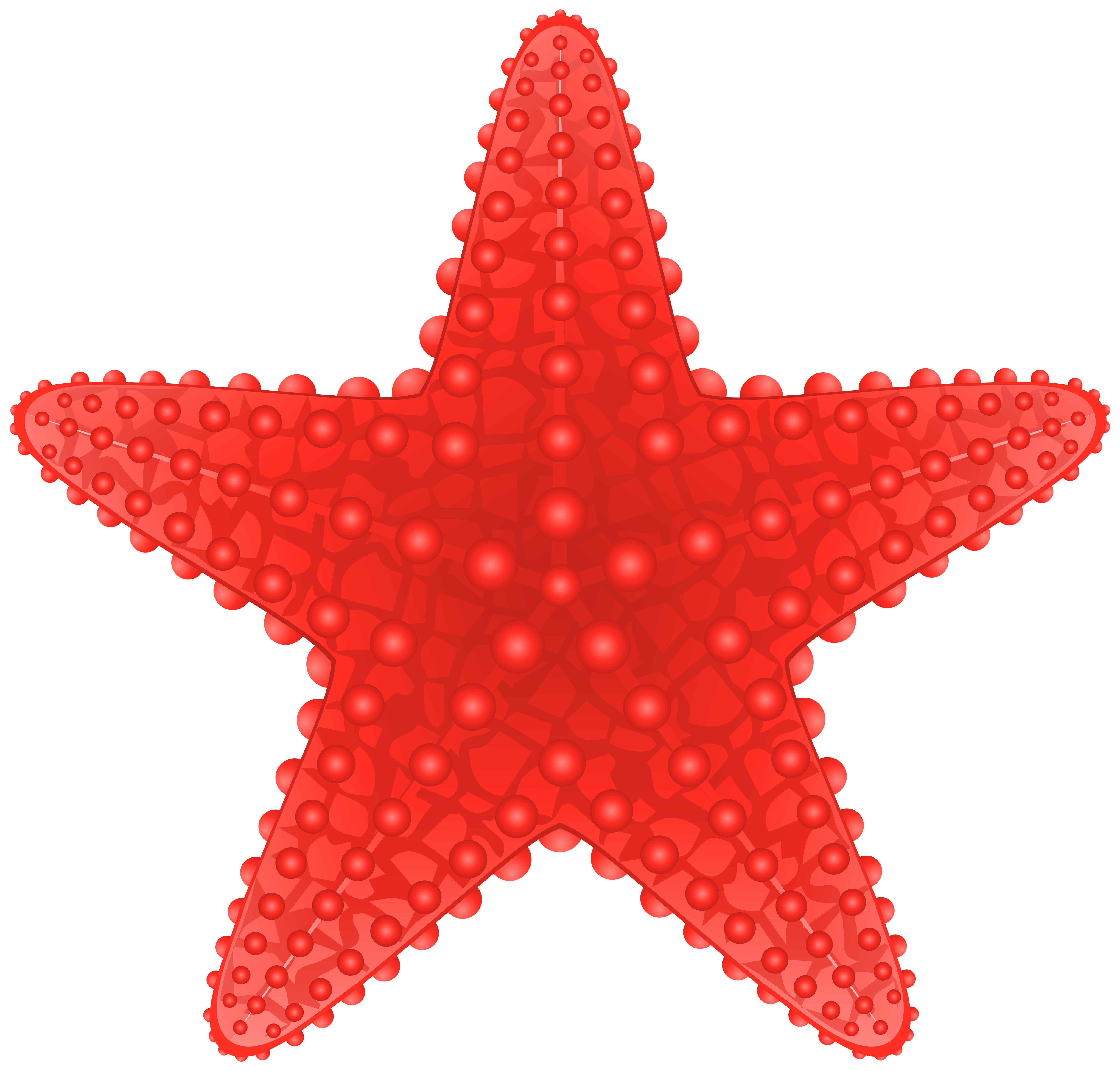 Cute Starfish Clipart | Free download on ClipArtMag