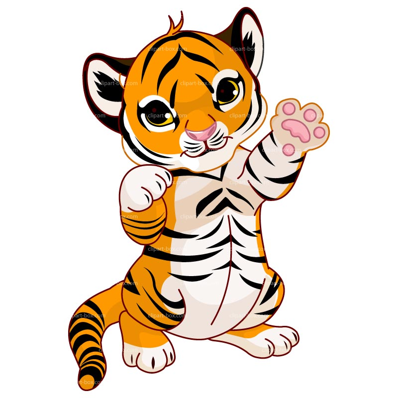 800x800 Cute Tiger Clipart Black And White Free 2