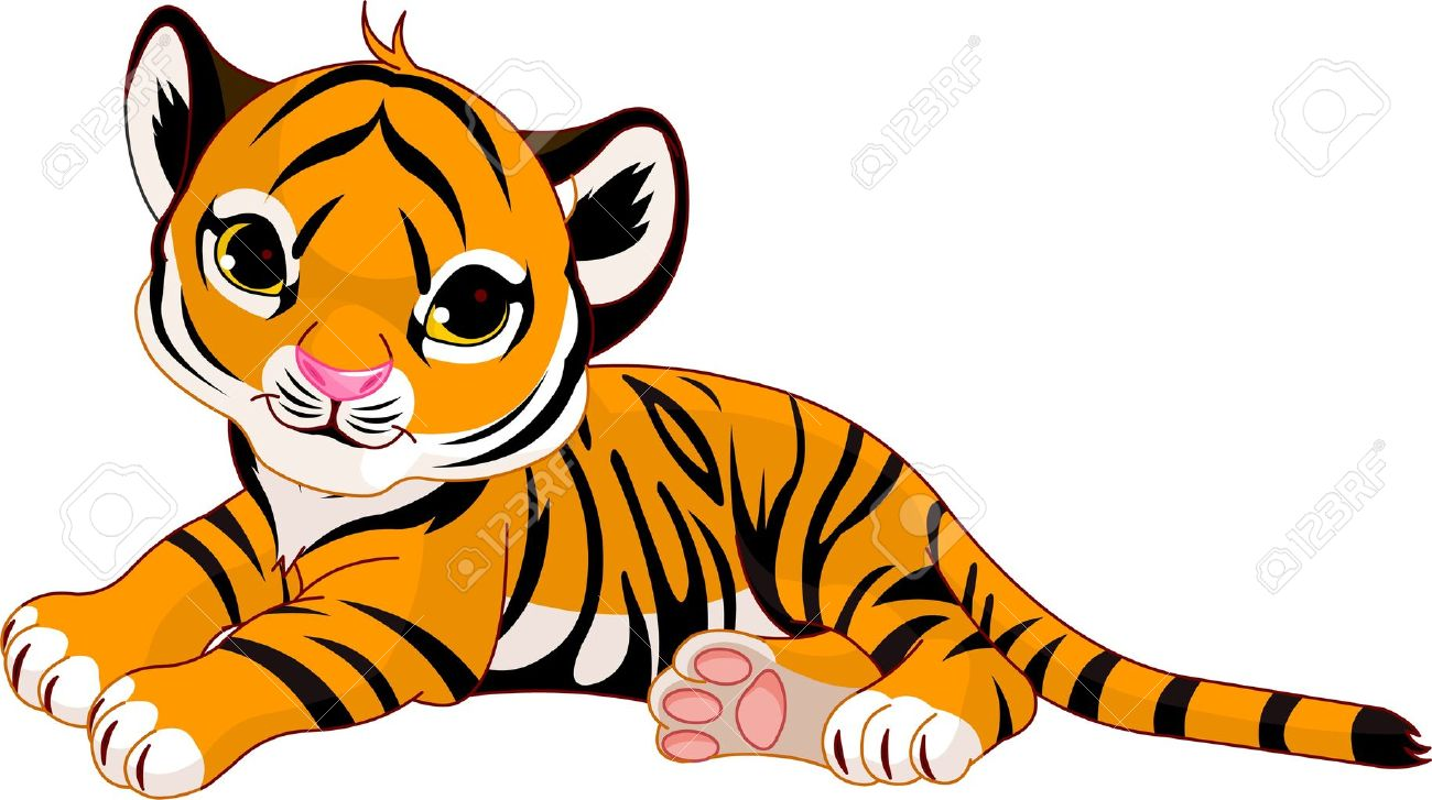 1300x727 Bengal Clipart Baby Tiger