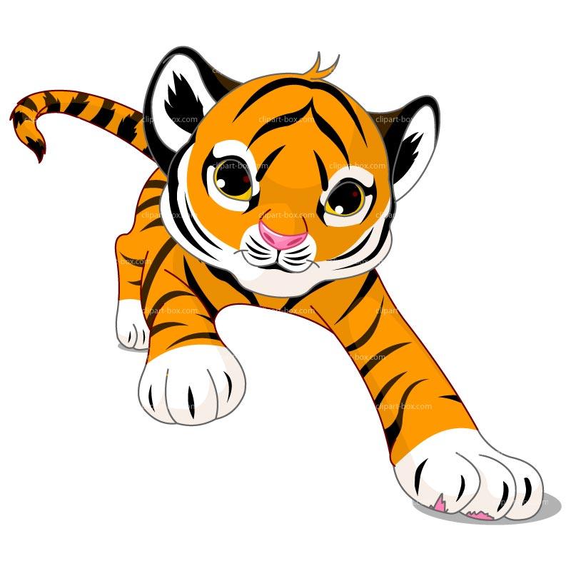 800x800 Clipart Running Tiger Clipart Panda