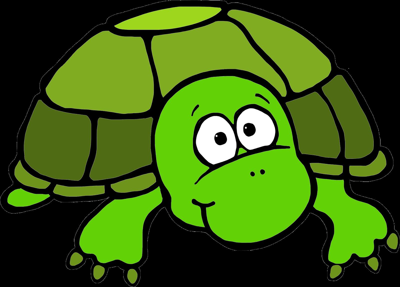 1600x1149 Top 91 Turtle Clip Art