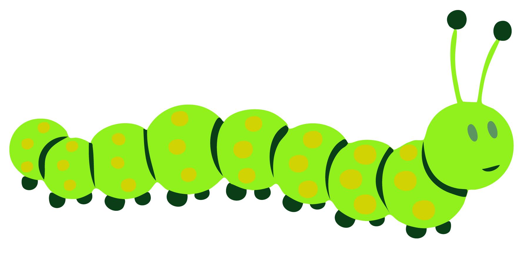 1772x864 Worm Clipart Caterpillar Head