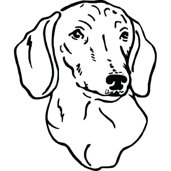 Dachshund Dog Clipart