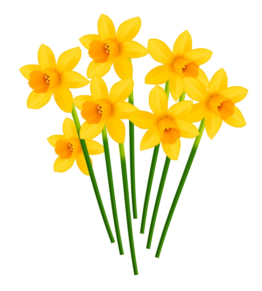850x942 How To Create A Pot Of Daffodils With Gradient Mesh In Adobe