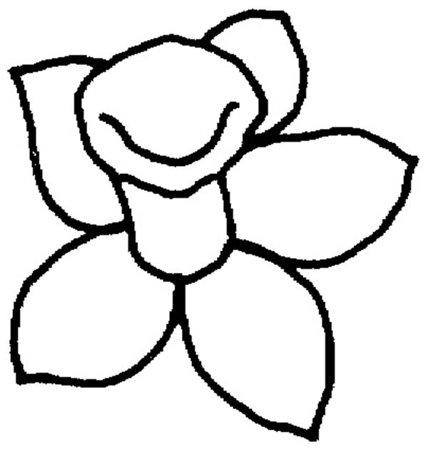 600x630 Daffodil, Daffodil Outline Coloring Page Daffodil Outline