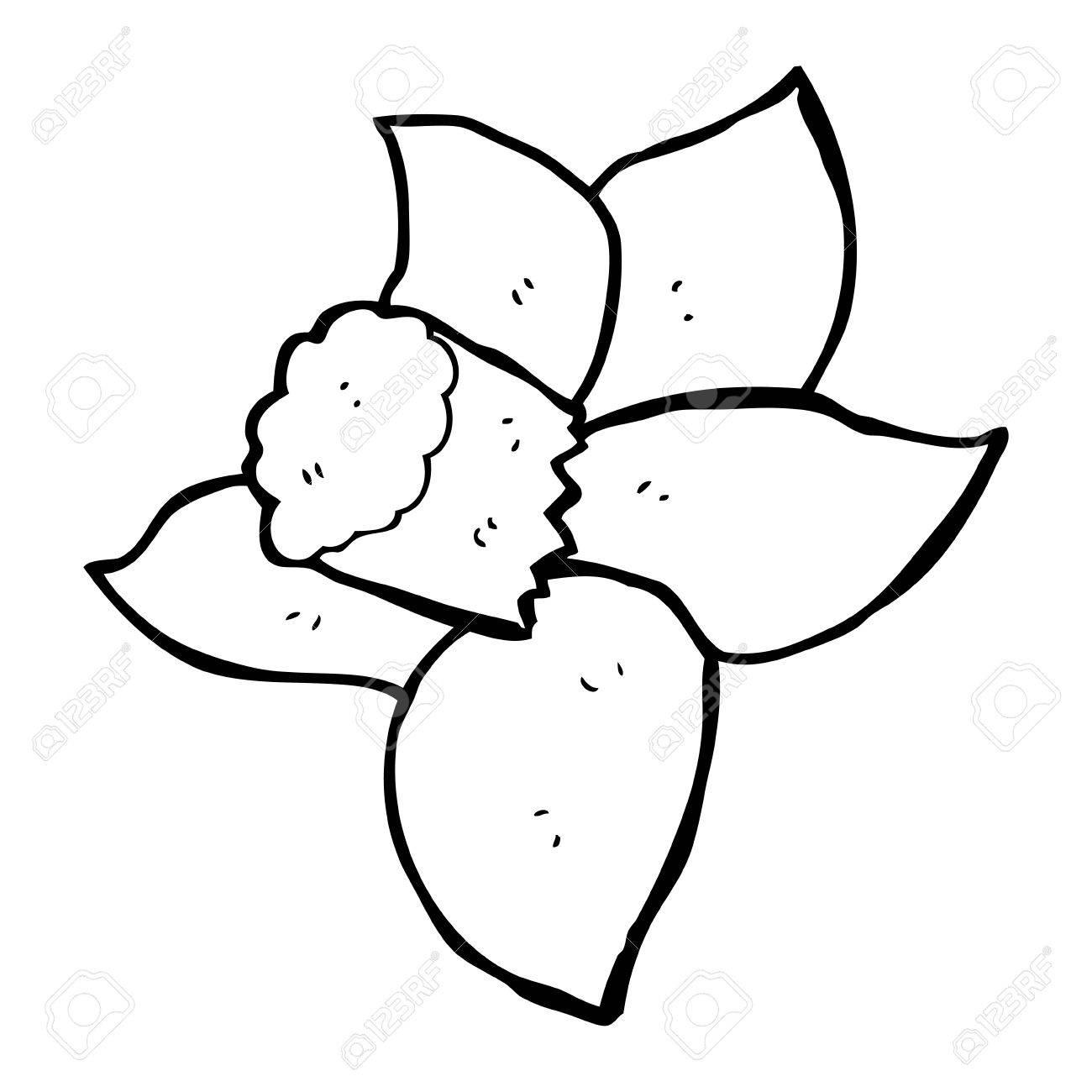 1300x1300 Daffodil Cartoon Group