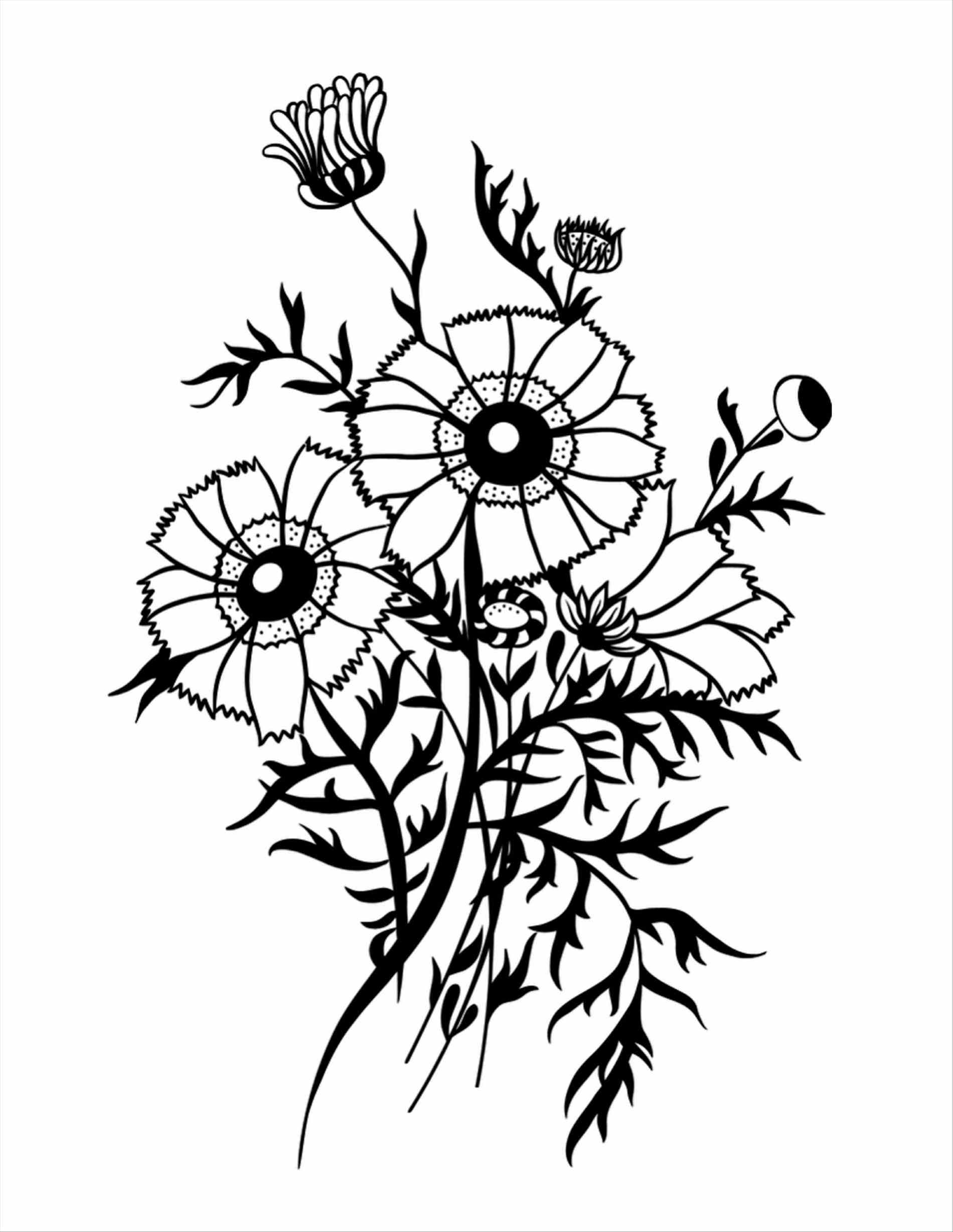 1900x2458 Hanging Flower Basket Drawing Flowerspad Flower Image Pic