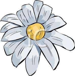 297x300 Daisy Flower Clip Art Image