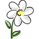 165x165 Top 66 Daisy Clip Art