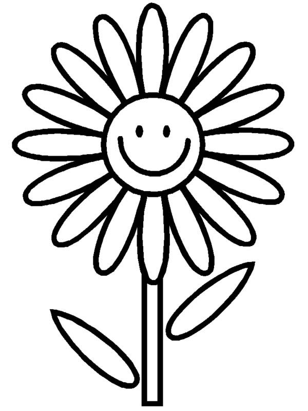 600x800 Daisy Clipart Coloring