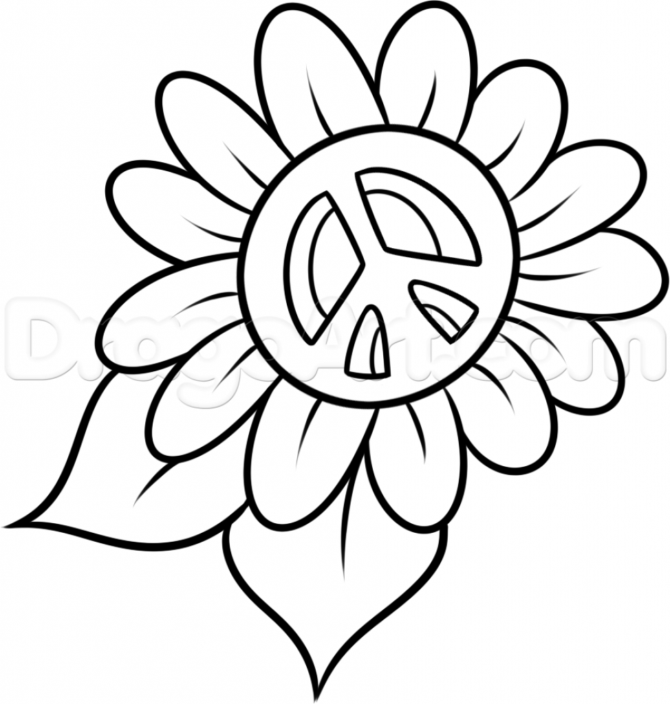 974x1024 Flower Head Drawing White Daisy Flower
