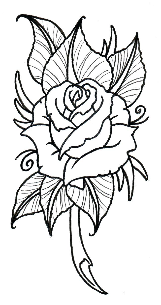 649x1232 Traditional Rose Outline By On Clip Art Flower Vector Tattoo