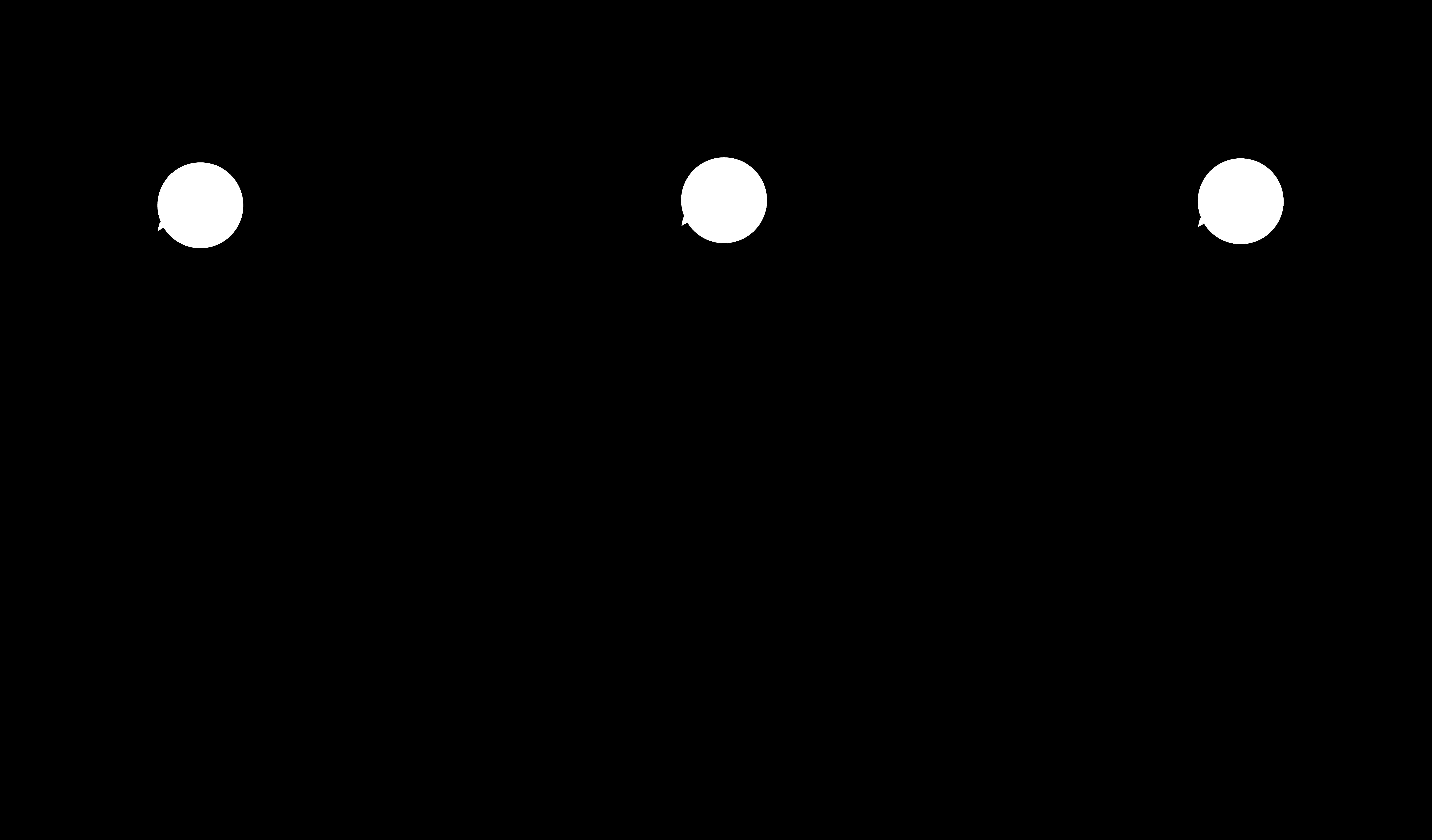 7747x4545 Black Silhouette Daisies