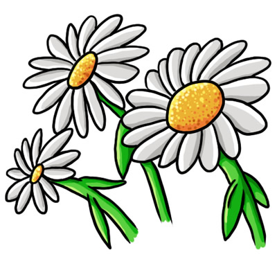 400x400 Daisy Flower Clip Art Free Vector For Download About Clipartix