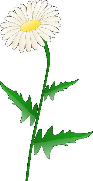 306x596 Daisy Clip Art