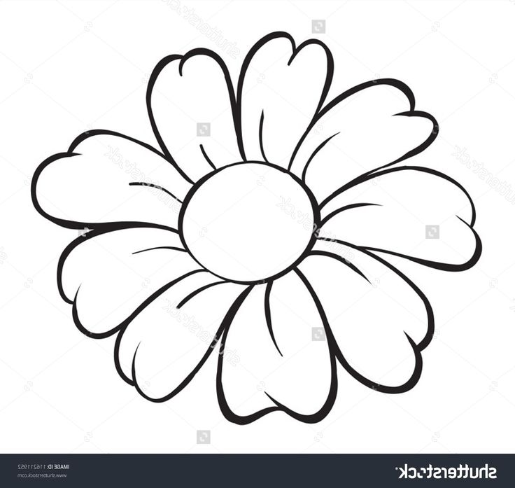 Daisy Flower Outline
