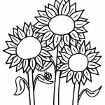 150x150 Coloring Page Flowers Daisy Flower Daisy Flower Outline Coloring