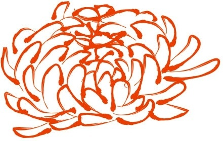 441x280 Daisy Flower Drawing Outline Free Vector Download (98,769 Free