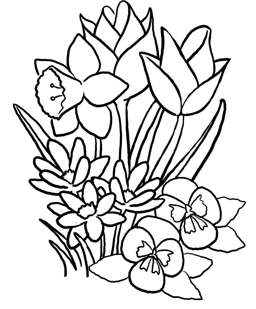 970x1169 Nature Print Flowers To Color Daisy Flower Coloring Pages Free