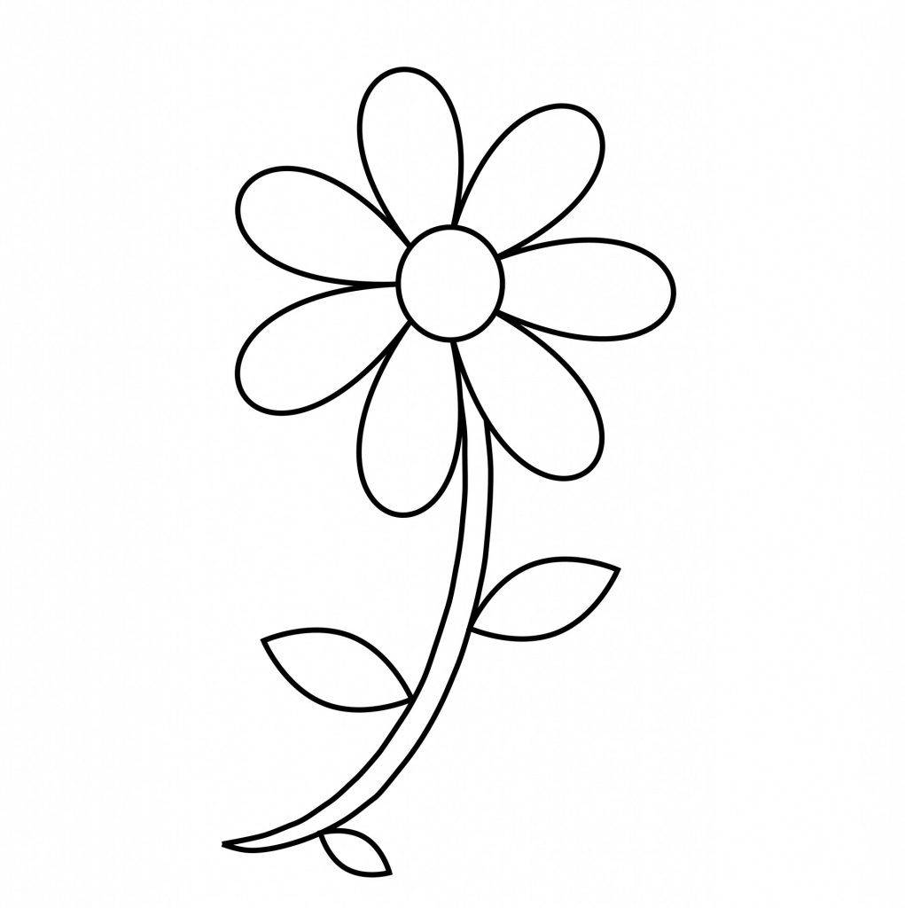 Daisy Flower Outline Free Download Best Daisy Flower Outline On
