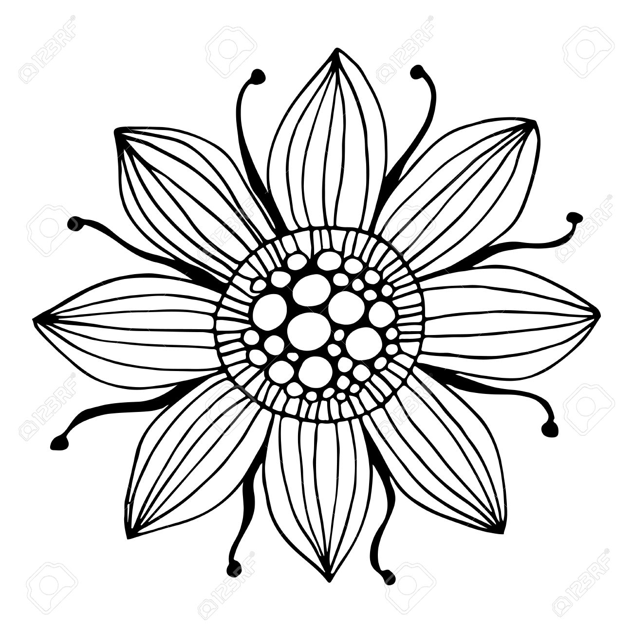1300x1300 42139232 Zentangle Flower The Image Is Hand Drawn Black Outline