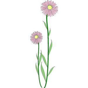 300x300 Daisy Clipart Flower Stem