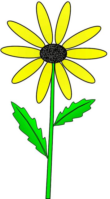 355x640 Free Daisy Clipart Clipart