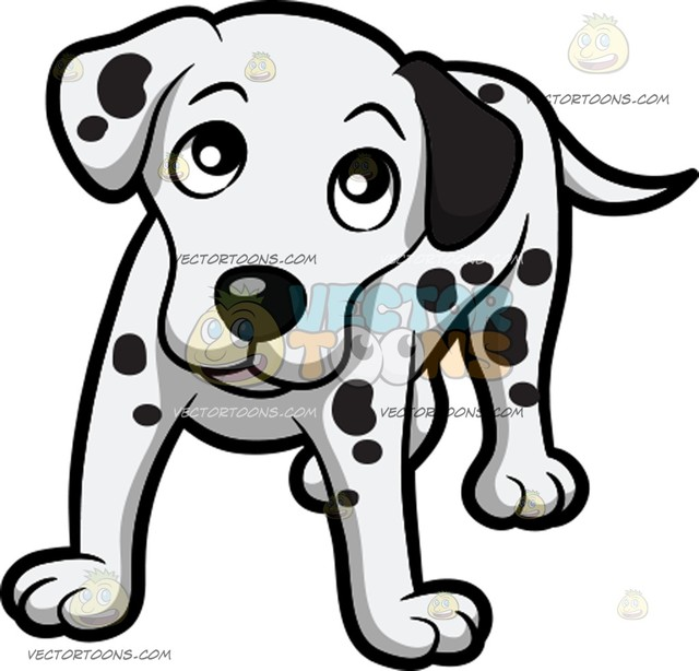 640x614 A Lovely Dalmatian Puppy Looking Up At Its Owner Cartoon Clipart