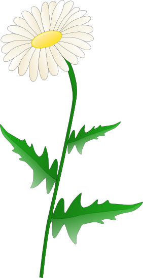 282x549 Daisy Clipart, Suggestions For Daisy Clipart, Download Daisy Clipart