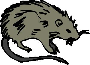 300x217 Mouse Rat Rodent Clip Art