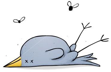 371x242 Dead Bird Clipart
