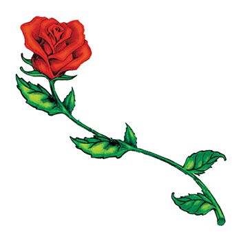 350x350 32 Best Long Stemmed Rose Tattoo Images Pink