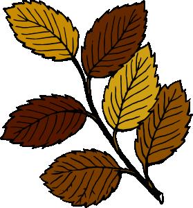 279x300 Plant Clip Art