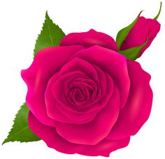 236x227 Purple Rose Png Clipart Image Roses Clipart Images