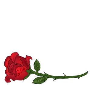 300x300 Stem Clipart Simple Rose