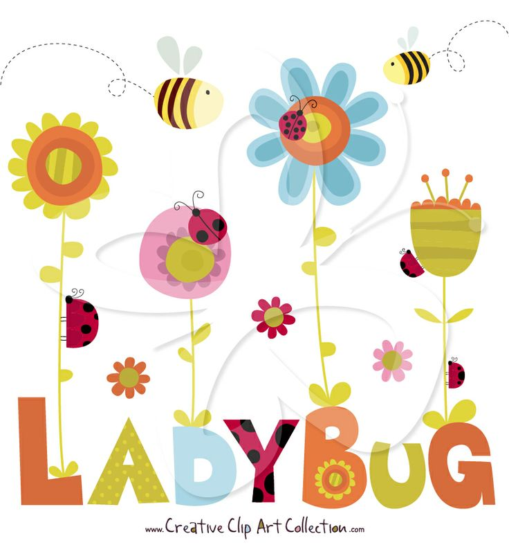 736x787 9 Best Insect Clip Art Images Drawings, Colors