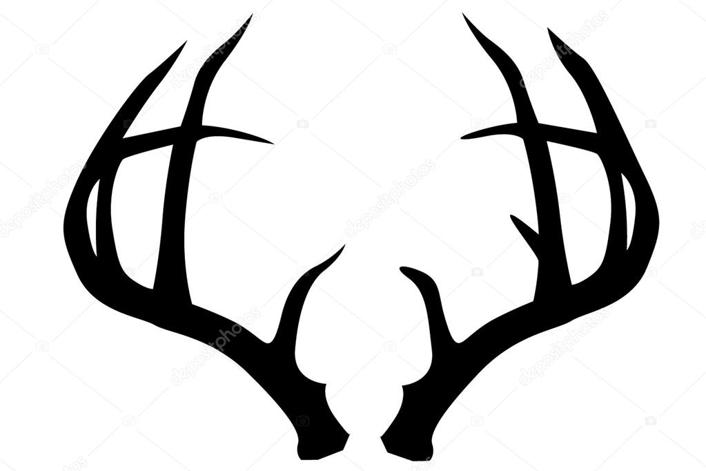 1023x682 Horns Clipart Buck Antler