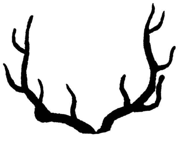 642x491 Stag Clipart Deer Antler