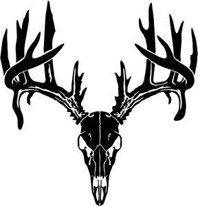 288x300 Antler Clipart Deer Skull