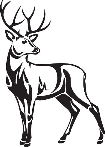 351x491 Deer Clipart Black And White Archives