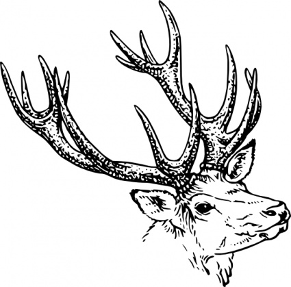 425x419 Antler Clipart Black And White