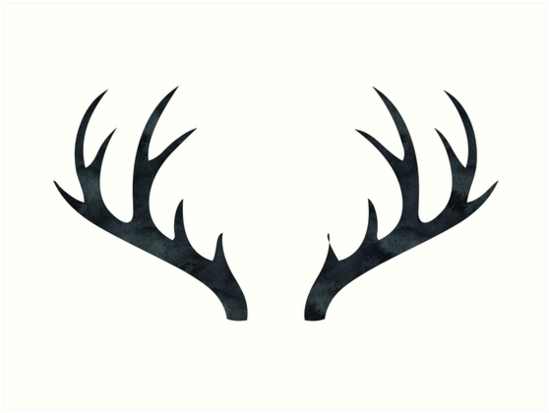 549x413 Antlers